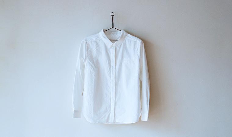 アルティメイトピマ ベーシックシャツ レギュラーカラー