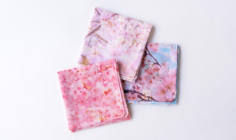 オーガニックコットン 桜-SAKURA- ラージハンカチーフ