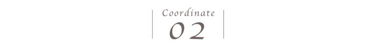 コーディネート02